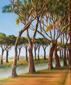 Maritime Pines - Evening - For Sale